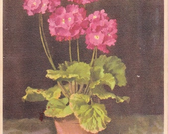 "Large ""Potted Plant"" Art Postcard - 209"