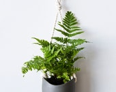 Ash - Porcelain and cotton rope hanging planter