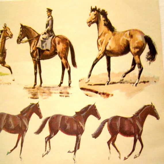 Vintage Wallpaper Trotting Horses Royal Military Paper Border Sam Savitt