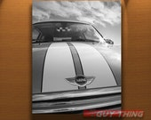 Mini Cooper Art, Car Photography, Boyfriend Gift, Car Picture, 8x10, 11x14, 16x20