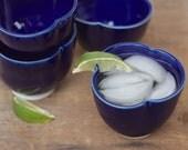 ink blue porcelain rocks glasses set of 2