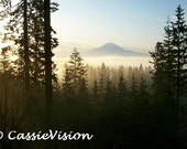 Mountain View- Mt. Rainier- Washington- Trees- Fog- Foggy Morning- Black- Blue- Nature- 4x6 or 5x7 Digital Image- Instant Download
