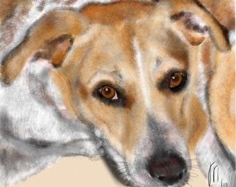 Custom Dog Portrait, custom pet portrait, custom portrait, dog portrait, dog art, dog lover, dog memorial, beagle mix, art print, dog, pet