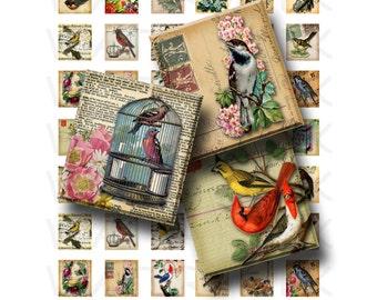 Vintage Birds - Digital Collage Sheet   - .75 x .83 Scrabble Size - INSTANT DOWNLOAD