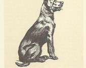 Labrador Retriever colour print by Cecil Aldin 1927 dog print Gundog Wall Art Home Decor Vintage Print