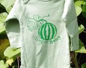 Organic Sugar Baby Onesie- Long Sleeves