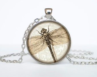 Dragonfly necklace Insect necklace bug pendant Victorian England jewelry beige black brown