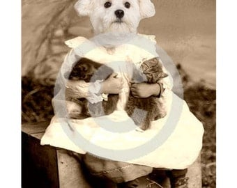 Digital Download Puppy, Kitten, Digital Anthropomorphic, ACEO, Digital Collage, Large Images, Transfer Images,Puppy,Vintage Digital,Graphics