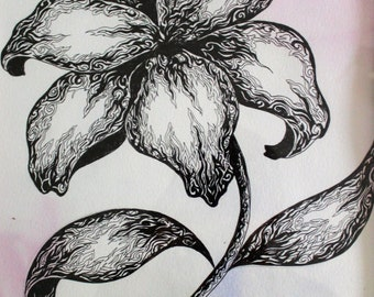 Pen and Ink Flower Drawing over Acrylic on Paper, Framed