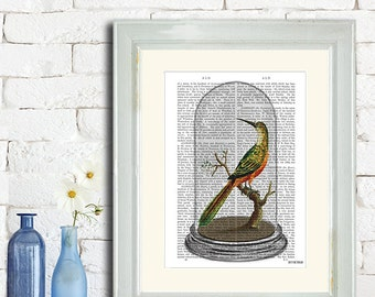 Bird in Bell Jar - bird illustration bird print taxidermy bird taxidermied bird decor victorian print victorian decor dining room decor