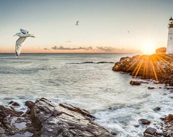 "Cape Elizabeth Maine Lighthouse - Portland Head Light - Landscape Photography 12x24"""