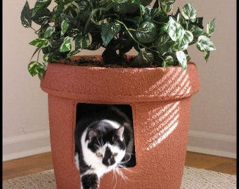 red clay sandstone decor ivy cat hidden litter box