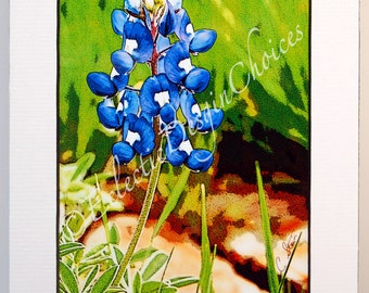 Bluebonnet -  Altered Photo Matted Print, Photographic Art Bluebonnet Print, Bluebonnet Art