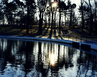 Tree Reflections at the Pond Photography Print, NYC Wall Art, New York City photograph