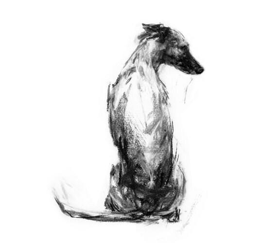 Whippet Art Print Fine Art Dog Print Whippet Gift