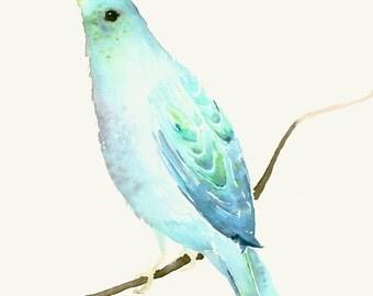 Bird Watercolor Print Light Blue Bird on a Branch