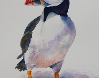 Puffin Bird Painting, Animal Art, PRINT, Home Decor. Wildlife painting. Penguin. FREE Shipping