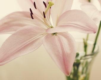 floral artwork, blush pink decor, wall art photo, floral wall art, flower print, floral bedroom art, floral bathroom art, blush pink bedroom