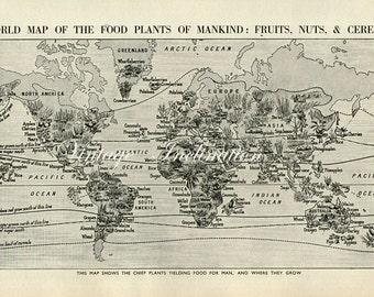 Vintage World Map Food 1930s original