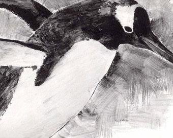 painting of penguin liquid pencil giclee print