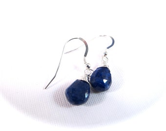 Faceted Lapis Lazuli Sterling Silver Gemstone Drop Earrings