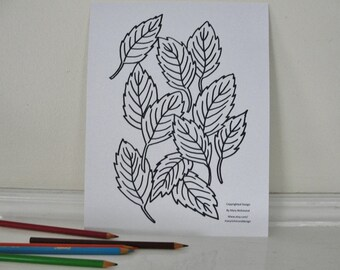 Printable Coloring Page, Tree Leaves Leaf Coloring Page for Adults and Children, Downloadable PDF File