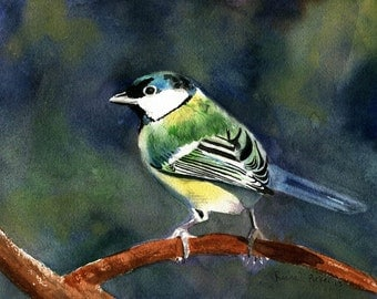 Great Tit songbird Art Print Giclee of a Watercolor Painting