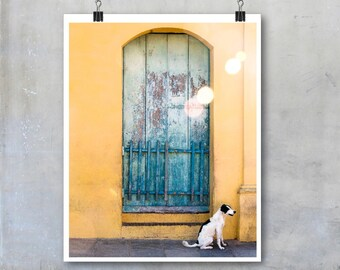Cuba wall art travel photography black and white dog Cuban home decor big print poster gift for dog lover animal pet art street window photo