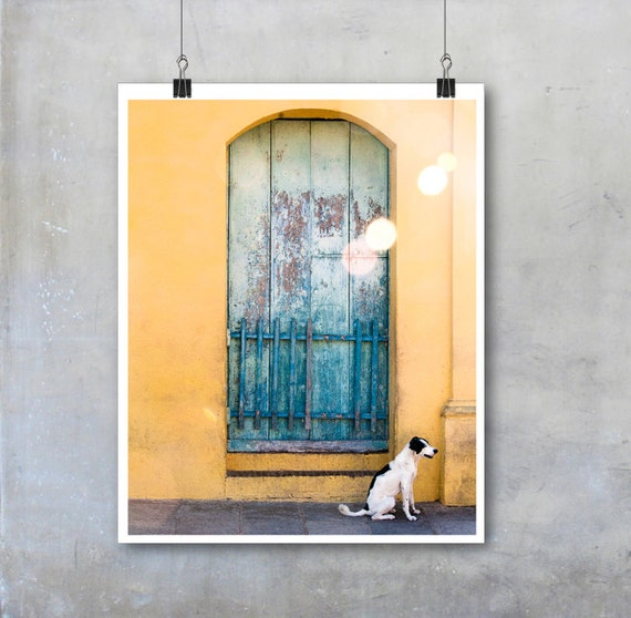 Cuba wall art travel photography black and white dog Cuban home decor big print poster gift for dog lover animal pet art street window photo