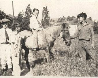 vintage photo 1920 4 Boys Ride Shetland Pony in Field