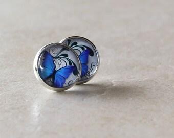 Blue Butterfly Earrings, Fine Art Print, Picture Jewelry