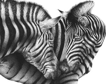 A4 Wildlife Giclee Fine Art Print of Zebras, Wildlife Art Gift, Animal Illustration, Picture, Wall Art Print