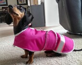 Waterproof Raincoat for Little Dogs with D-Ring Leash Attachment
