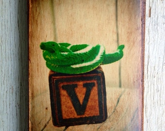 Vintage Toy V is for Viper Art/Photo - Wall Art 4x6