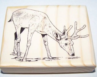 Large Deer Drinking from Stream new mounted rubber stamp