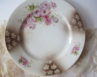 Vintage Luncheon Plate Carl Tielsch Altwasser Pink Floral