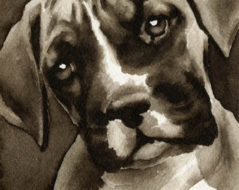 BOXER PUPPY Sepia Art Print Signed by Watercolor Artist DJ Rogers