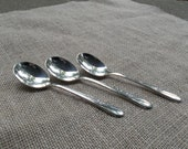 Antique Silver Spoons Vintage Flatware MEADOW FLOWER Silver Plate Wedding Decor Table Settings French Country Cottage Chic Prairie Set of 3
