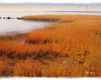 Charleston Marsh in November (12x17 - South Carolina - Coastal - Sea Grass - Inlet - Sea - Salt Air - Fine Art Print -  Wall Art)