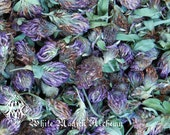 Wild Red Clover Flowers . Herbal Alchemy . One Ounce . Love, Happiness, Prosperity