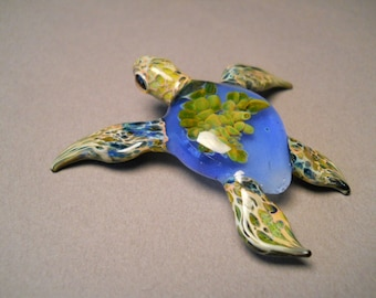 Extra Large Blue Sea Turtle with Green Anemone inside the shell