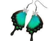 Handmade  Real Butterfly Wing Earrings (Lorquinianus Hindwing - E078)