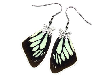 Handmade  Real Butterfly Wing Earrings (Pareronia Boabera Forewing  - E202)