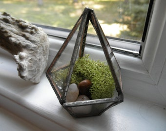 Teeny Tiny Glass Terrarium