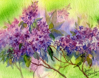 FREE SHIPPING,Lilac, Blank Note cards, Purple, Spring Green,Bush,Daylight,All Occasion Card, Fine Art Print, By Janet Dosenberry