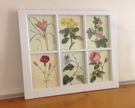 Window Frame Art with Botanical Prints