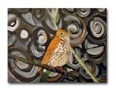 Woodland Bird Art 12 x16 oil on canvas fine art painting Wood Thrush modern swirls contemporary circles rustic home decor for bird lover - KneeDeepOriginals