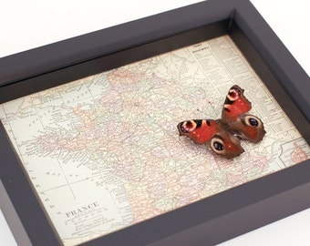Framed Map of France with Real Native Butterfly