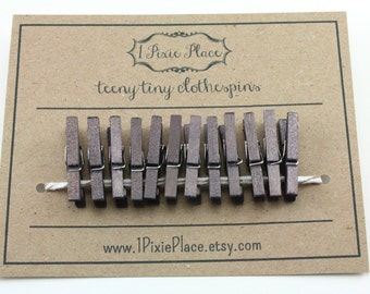 Mini Clothespins - Set of 12 - Titanium