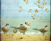 Hallelujah - Art Print.  Art for a child's room, nursery art, beach art.